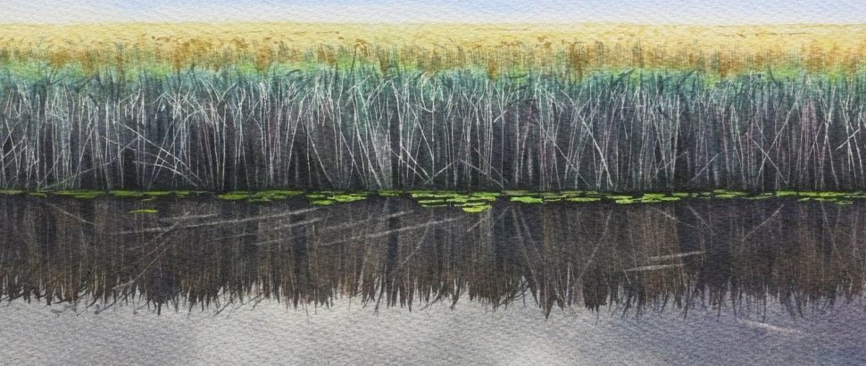 Corn And Reeds  Watercolour By Lillias August RI