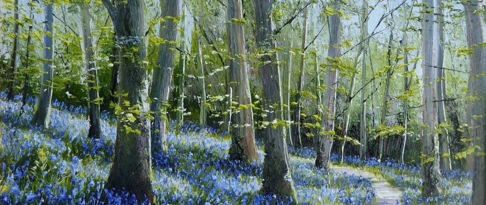 Spring Light In The Bluebell Woods By Mark Eldred