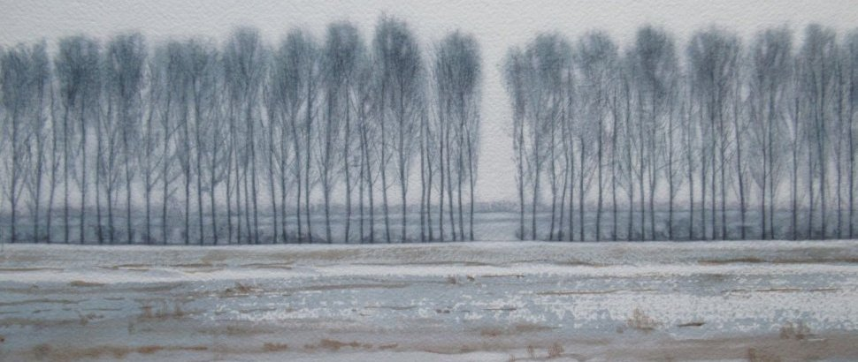 Winter Poplars 23.5 X 40cm Watercolour By Lillias August